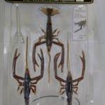 Vagabong Crust Bug 4.5″-2
