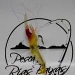 Hart Big Shrimp-3