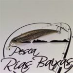 Duo-Ryuki-70S-Brown-Trout-ND-1
